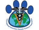 IVFSA logo